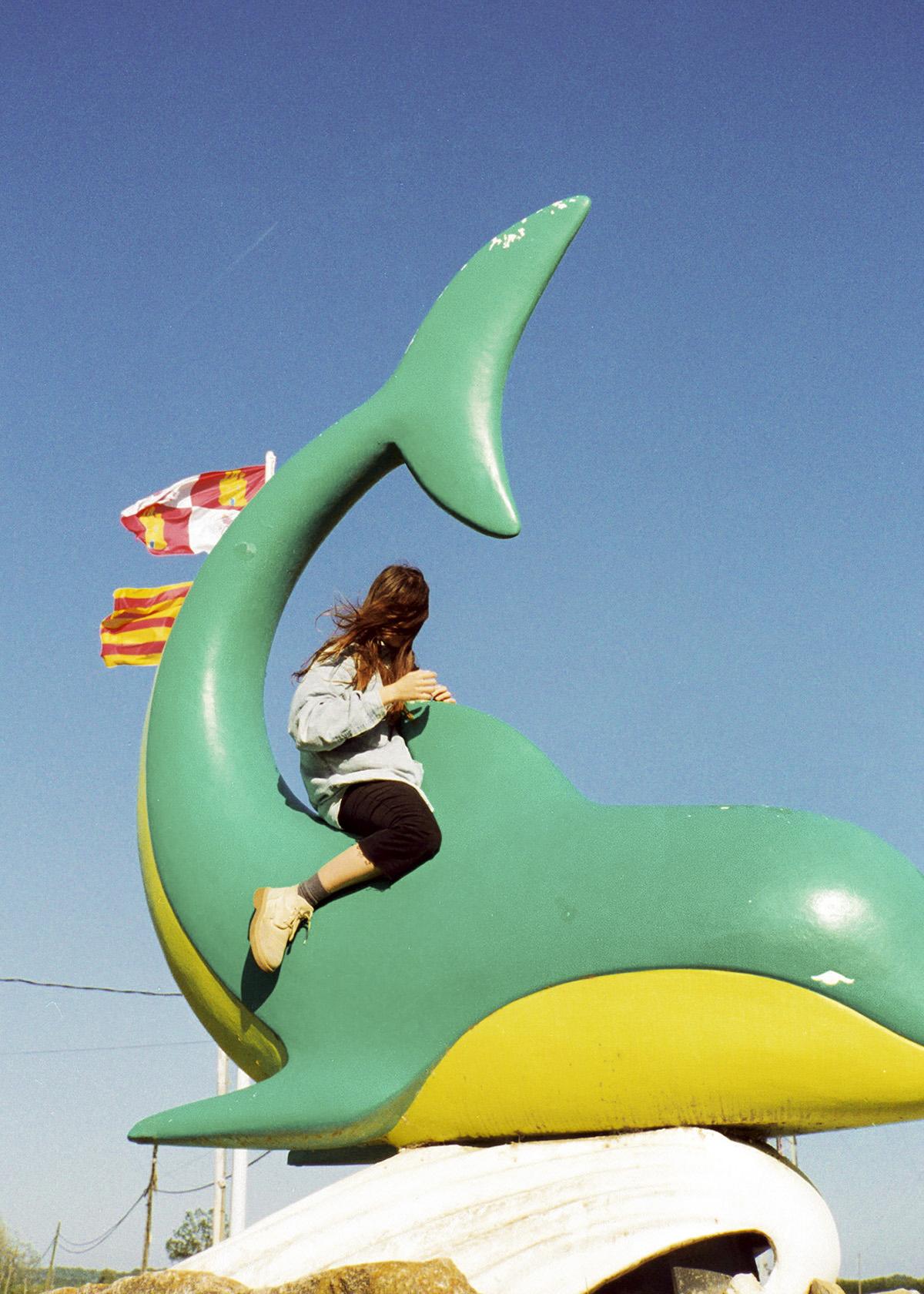 delfin, banderas