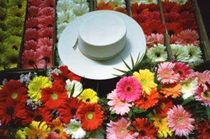 Los sombreros de Trinidad